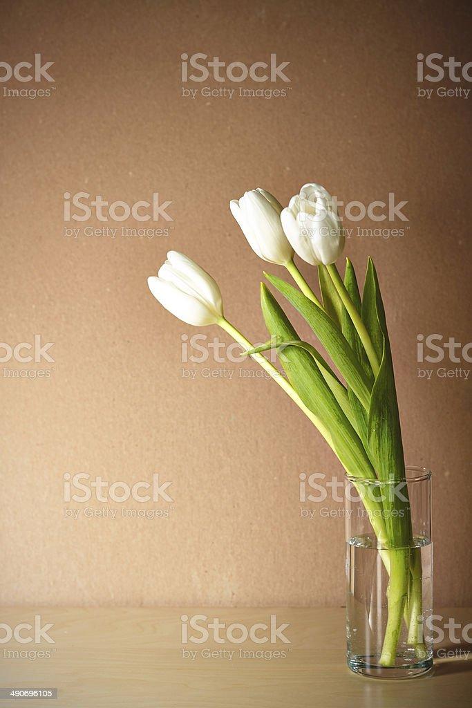 tulps в Ваза на Бежевый фон стоковое фото