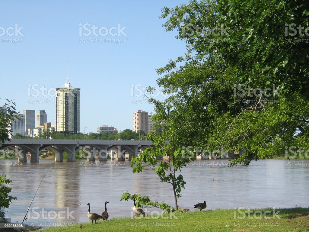 Tulsa Oklahoma from the west bank of the Arkansas River with baby geese and a fishing pole royalty-free stock photo