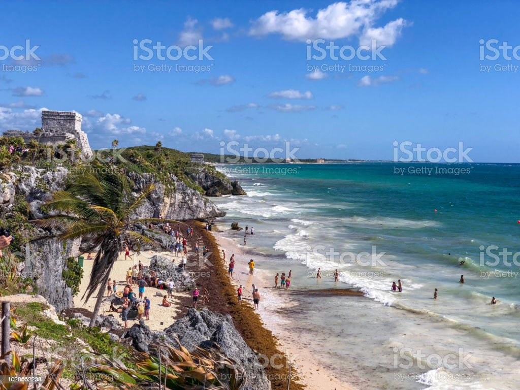 Tulum Beach Covered By Sargassum Seaweed With Crowd Stock
