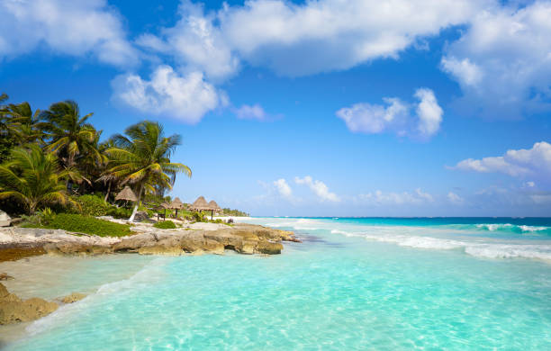 tulum caribbean beach in riviera maya - mexico stock photos and pictures