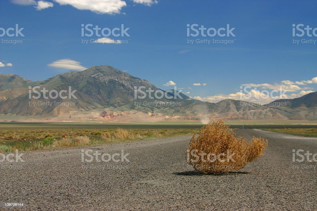 Tumbleweed in middle of road by mountains stock photo