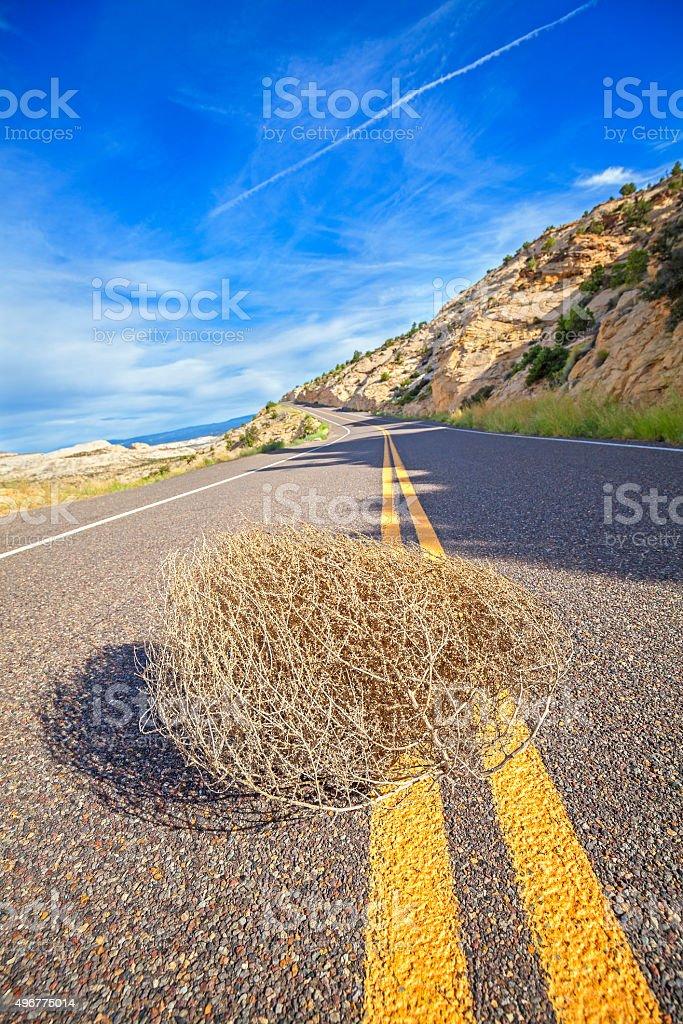 Tumbleweed on an empty road, travel concept picture. stock photo