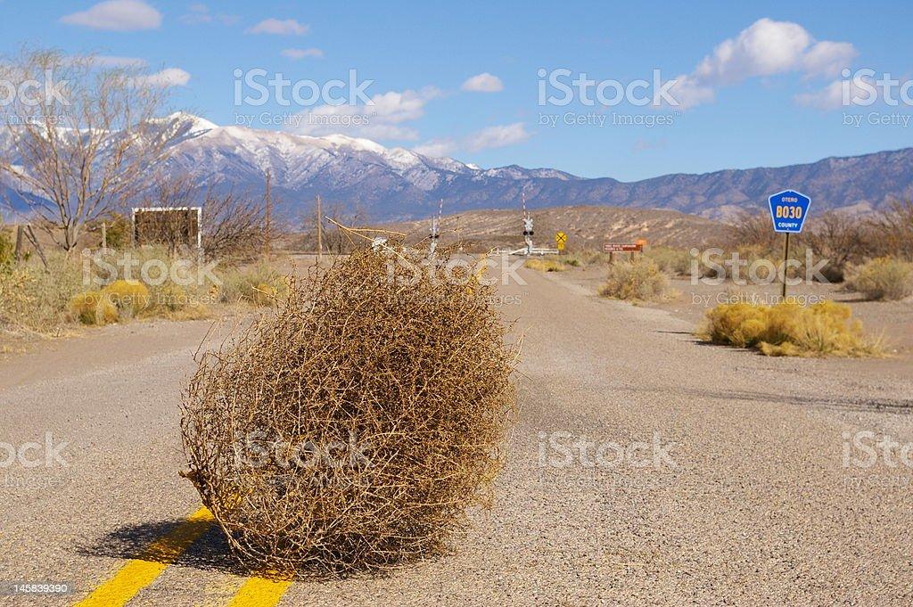 Tumbleweed On The Road stock photo