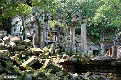 Beng Mealea Temple, Siem Reap, Cambodia. Intact and fallen or collapsed temple walls are framed and covered by the vine like roots of the Spueng tree and the frieze of green leaf ivy and vegetation that clings to the masonry and stonework in this ancient ruin, Beng Mealea or Bung Mealea Temple, Angkor Wat period, Siem Reap, Cambodia