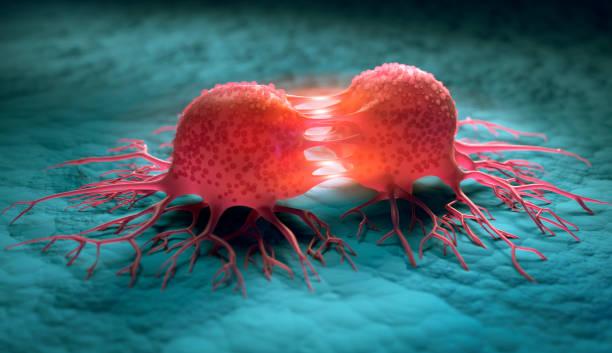 Tumor - Reproducción de células cancerosas - foto de stock