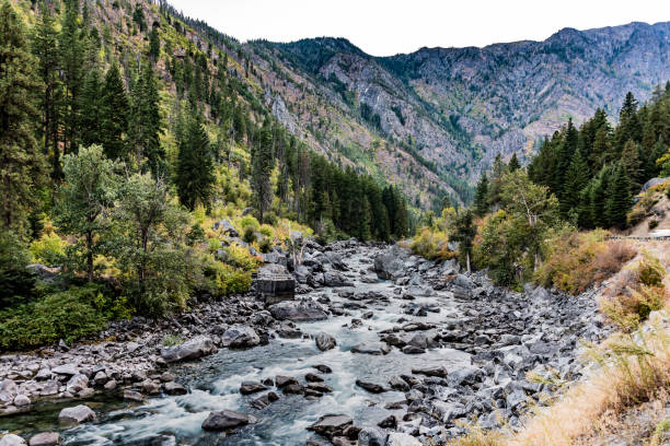 tumwater canyon - dally stock pictures, royalty-free photos & images