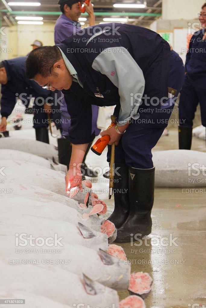 Tuna Auction Inspection at Tsukiji Market royalty-free stock photo