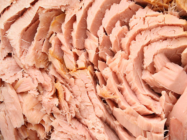 Tuna chunks Closeup view of tuna pieces like when packaged in cans tuna animal stock pictures, royalty-free photos & images