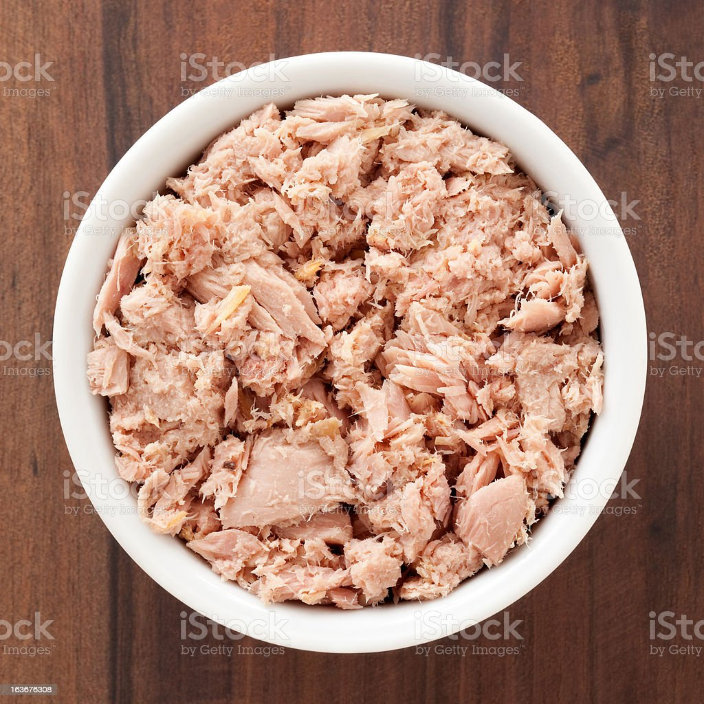 Tuna chunks stock photo