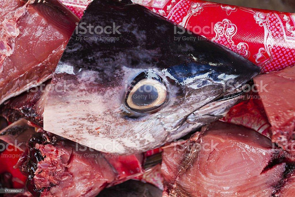 Atún de peces en el mercado foto de stock libre de derechos