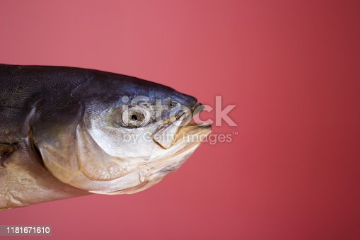 156872766 istock photo Tuna fish on a pink background, salted dried - isolate 1181671610