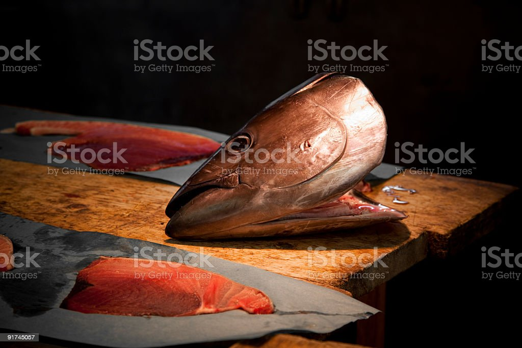 tuna head stock photo