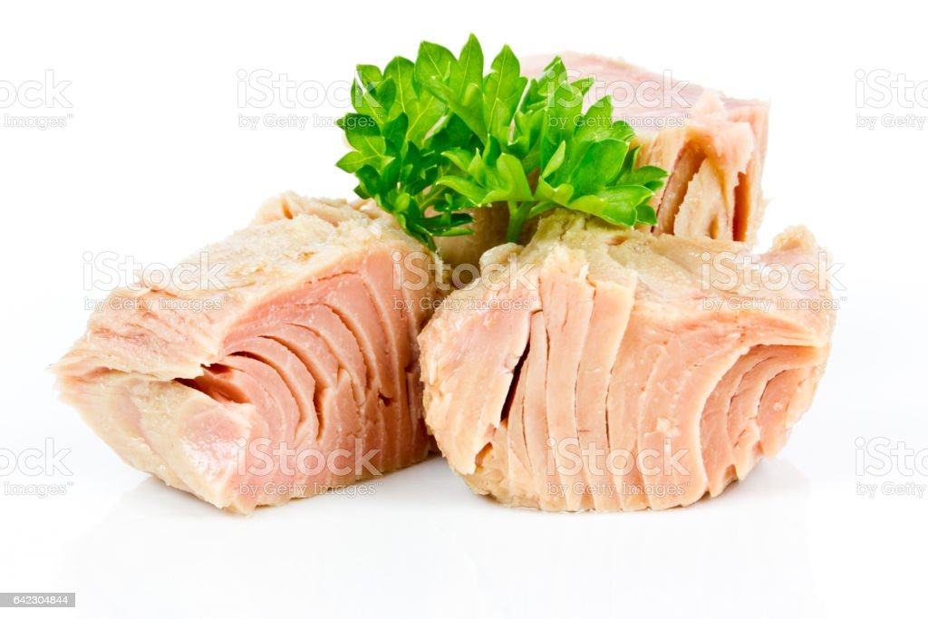 tuna isolated stock photo