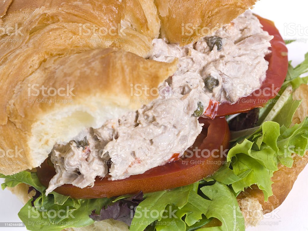 Tuna salad croissant sandwich royalty-free stock photo