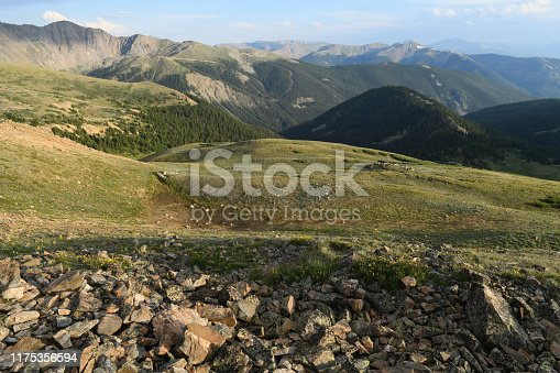 July alpine tundra of the Rocky Mountains, above the tree line,  covered with mountain wildflowers. Famous Arapahoe ski trails visible on the horizon Picture taken above the Loveland Pass, Colorado, USA.