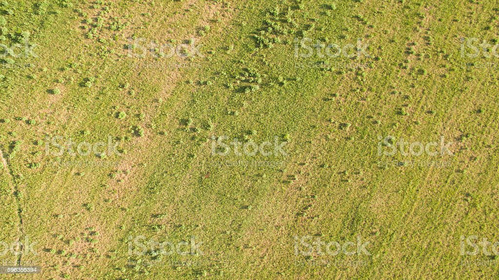 Tundra from above royalty-free stock photo