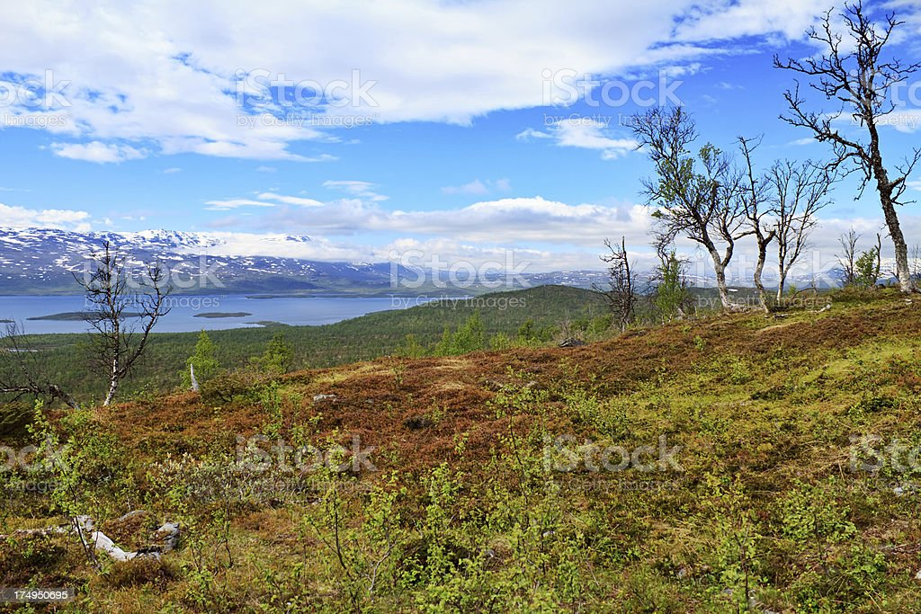 Tundra lake, Sweden royalty-free stock photo