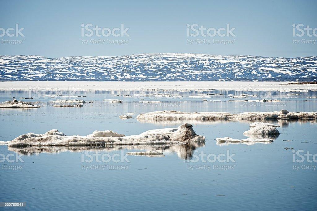 Tundra of Baffin Island, Frobisher Bay, Nunavut, Canada. stock photo