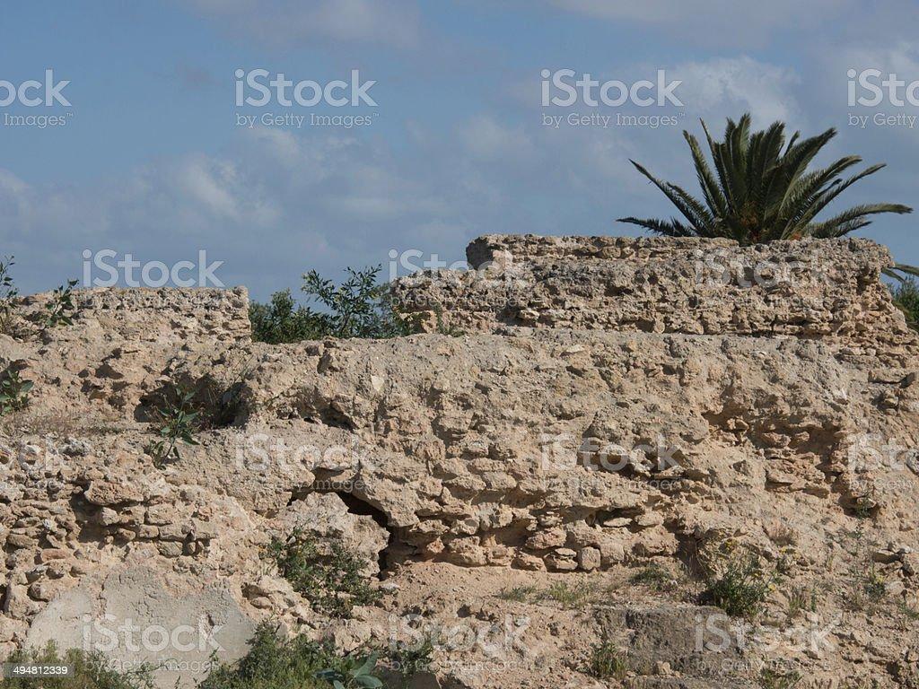 tunis stock photo