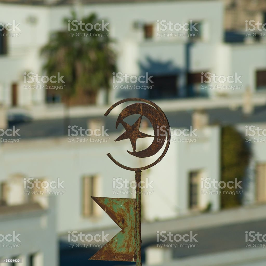 Tunisian Emblem on Roof (2) stock photo