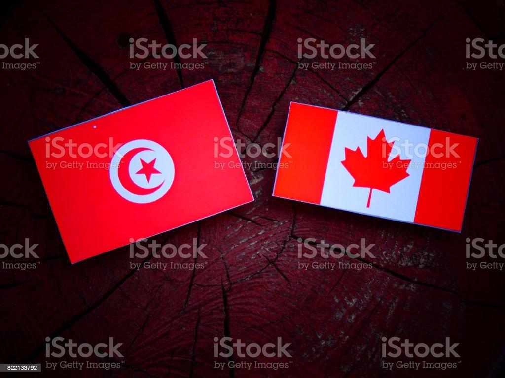 Tunisian flag with Canadian flag on a tree stump isolated stock photo