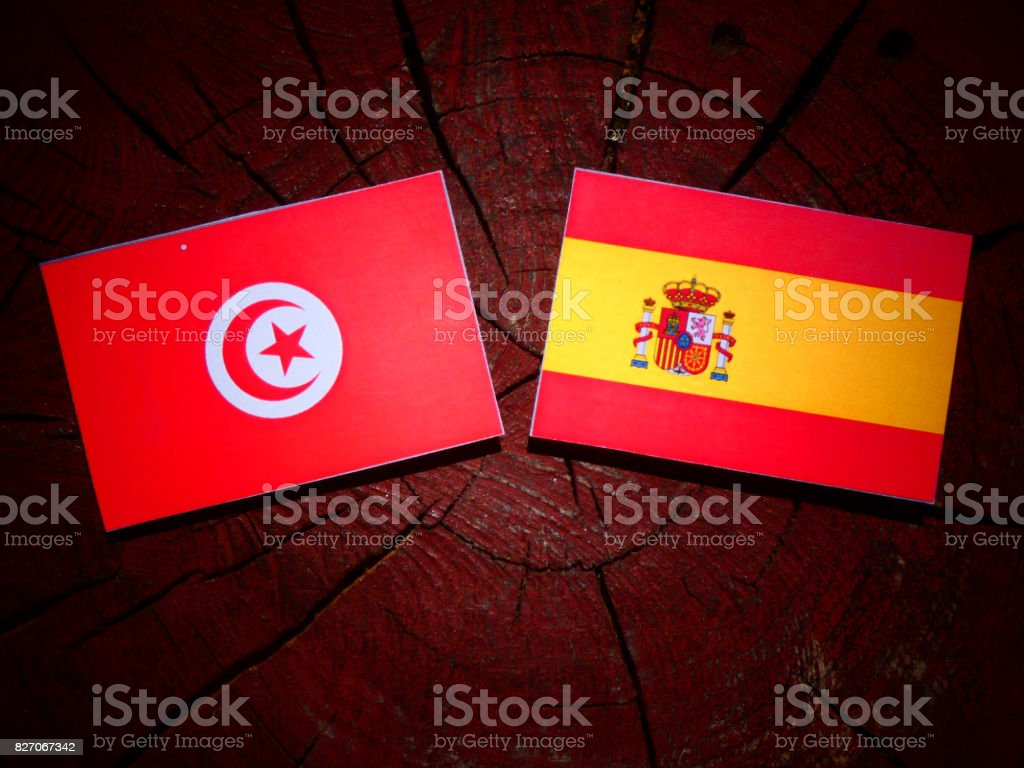 Tunisian flag with Spanish flag on a tree stump isolated stock photo