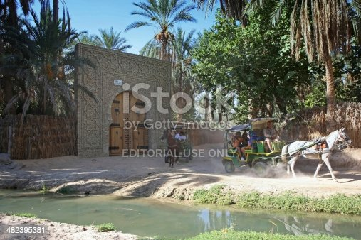 Tozeur, Tunisia - September 16th, 2012 : Tourists driving in a carriage through the biggest tunisian oasis that is called Palmeraie de Tozeur in Tozeur, Tunisia.