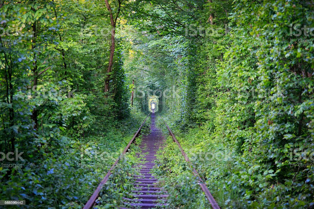 Tunnel of love. stock photo