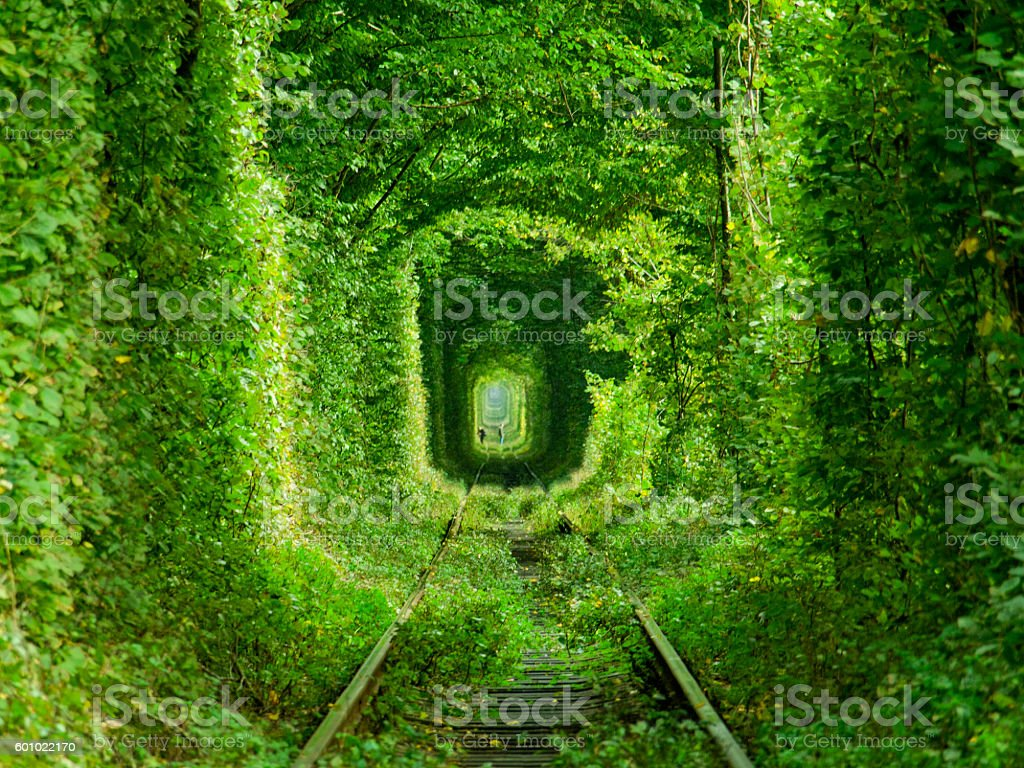 Tunnel of Love stock photo