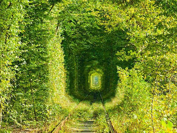 トンネルの愛 ストックフォト