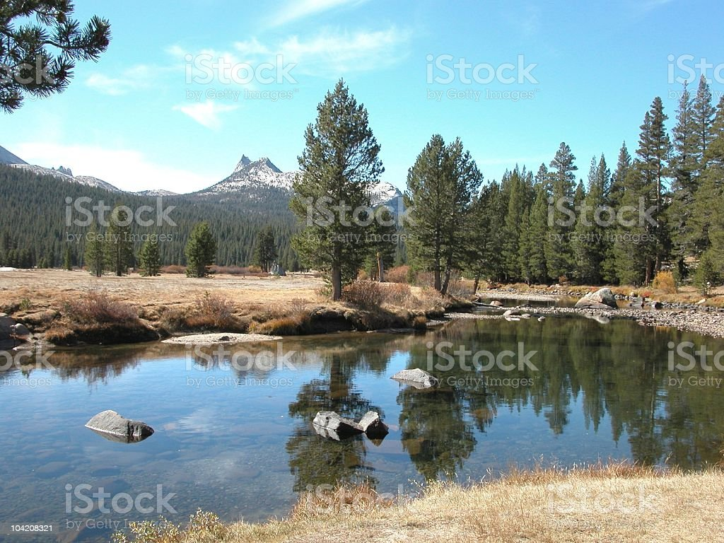 Tuolumne River and Meadow, Yosemite National Park, California, USA royalty-free stock photo