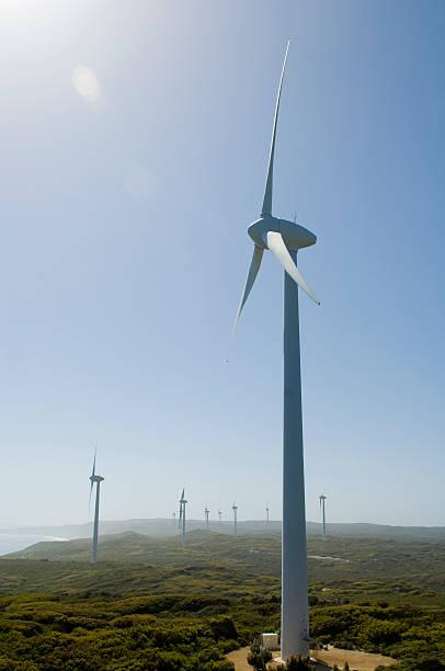 Turbines on a wind farm