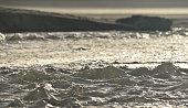 istock Turbulent water at Pentewan Cornwall 1297771826