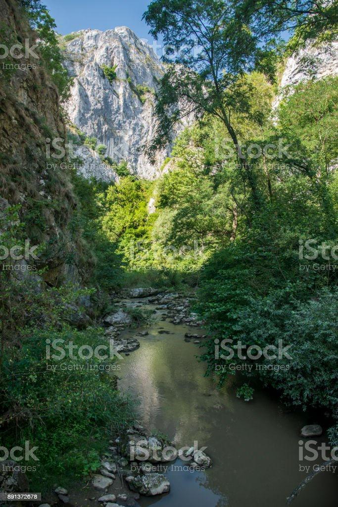 Turda canyon _ summer stock photo