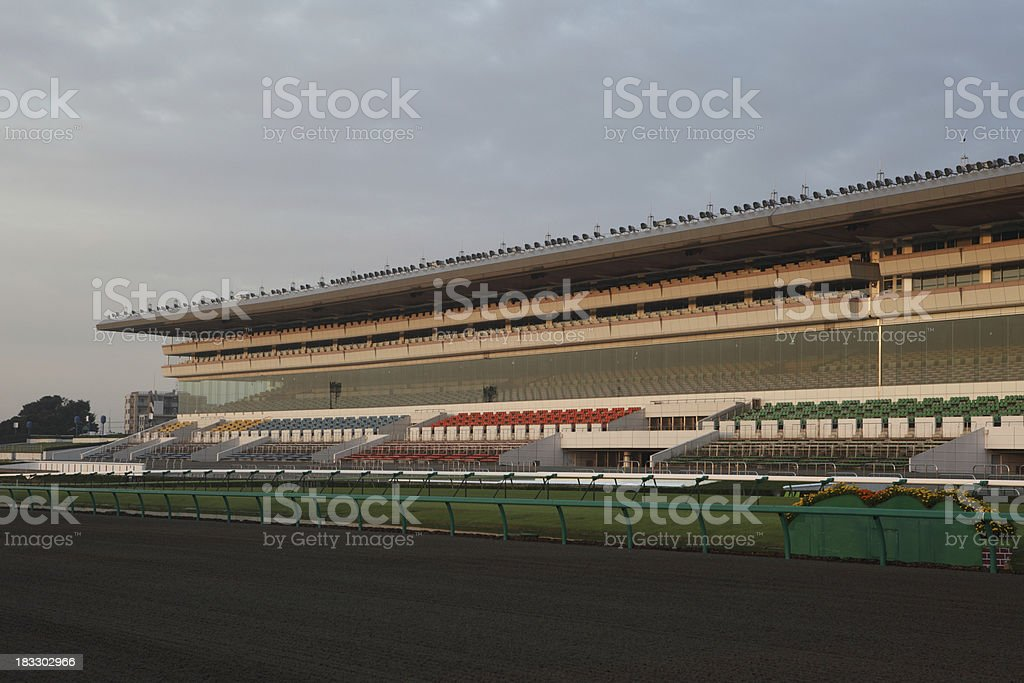 Turf and Dirt Track royalty-free stock photo