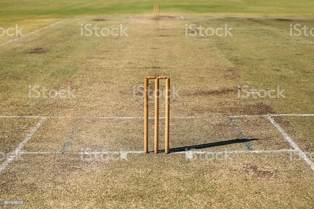 Turf Cricket Pitch photo libre de droits