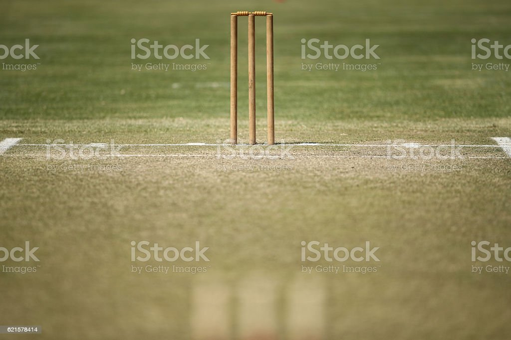 Turf Cricket Pitch – Foto