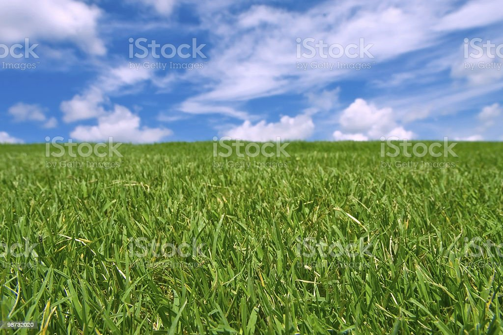 turf grass against blue sky with scattered cirrus clouds 免版稅 stock photo