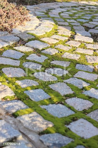 Close up with selective focus on grass pavers