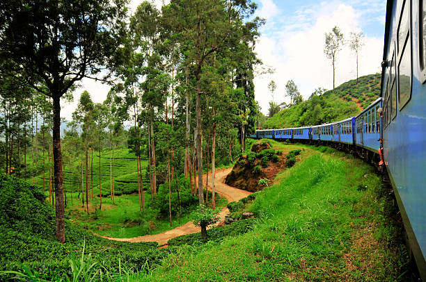 turismo en tren stock photo