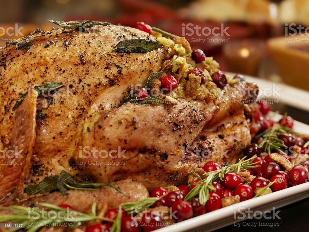 Turkey Dinner royalty-free stock photo