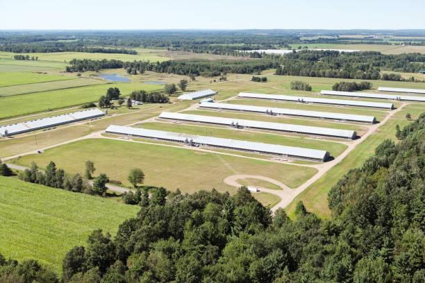 Vue aérienne de la Turquie Farm - Photo