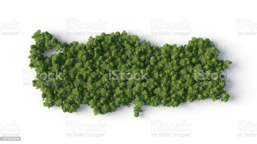 turkey forest shape stock photo