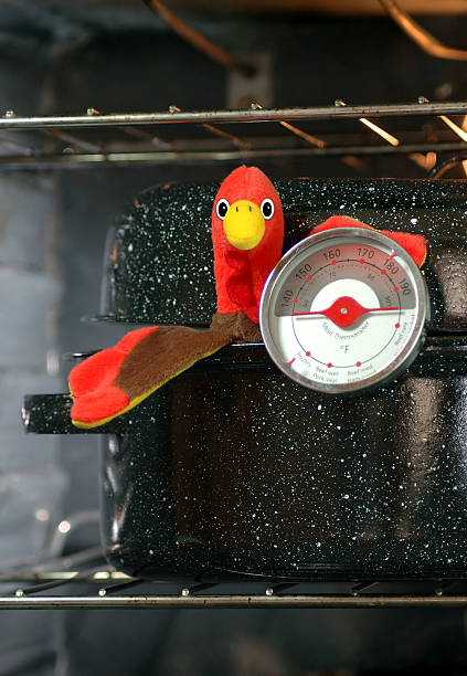 Turkey in Roaster with Meat Thermometer stock photo