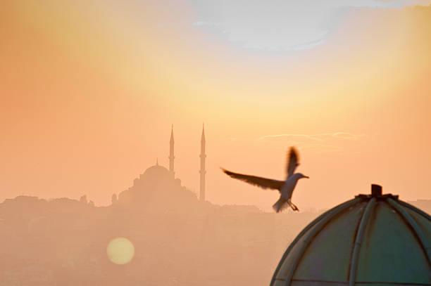 Turkey Istanbul stock photo