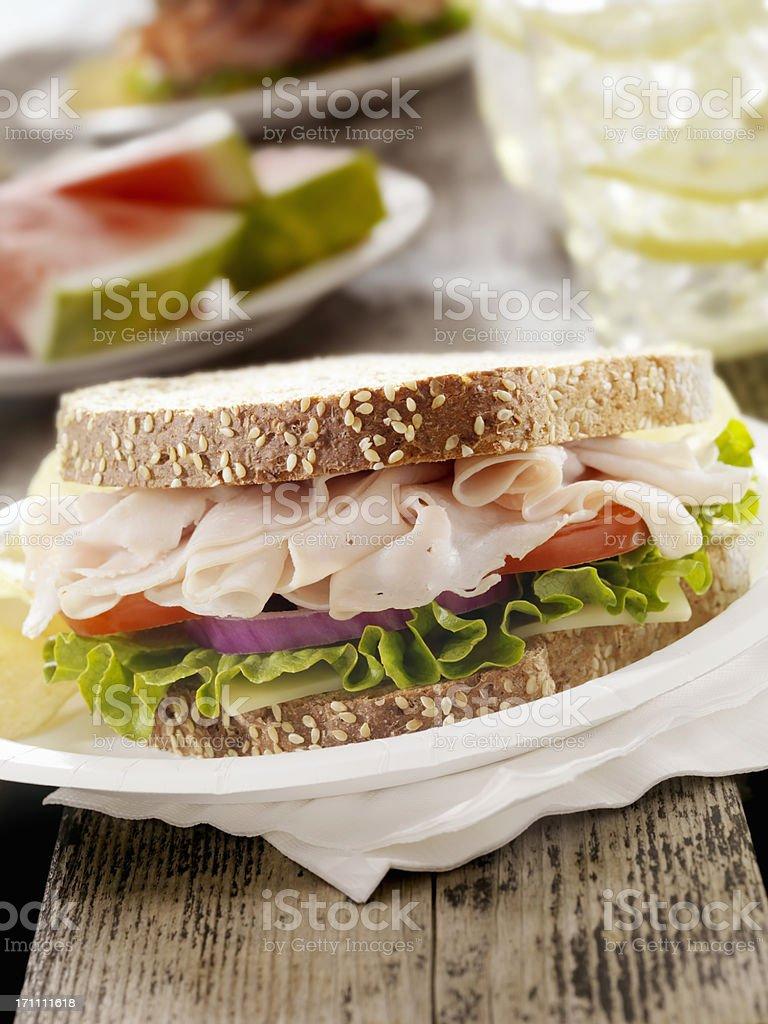 Turkey Sandwich at a Picnic stock photo