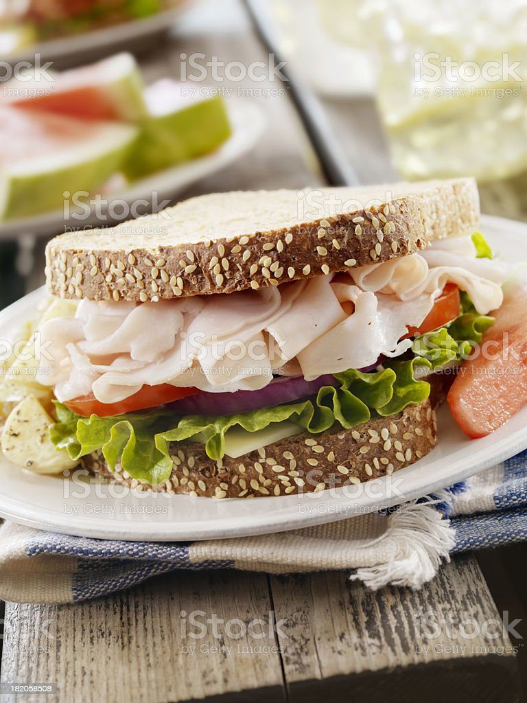 Turkey Sandwich at a Picnic royalty-free stock photo