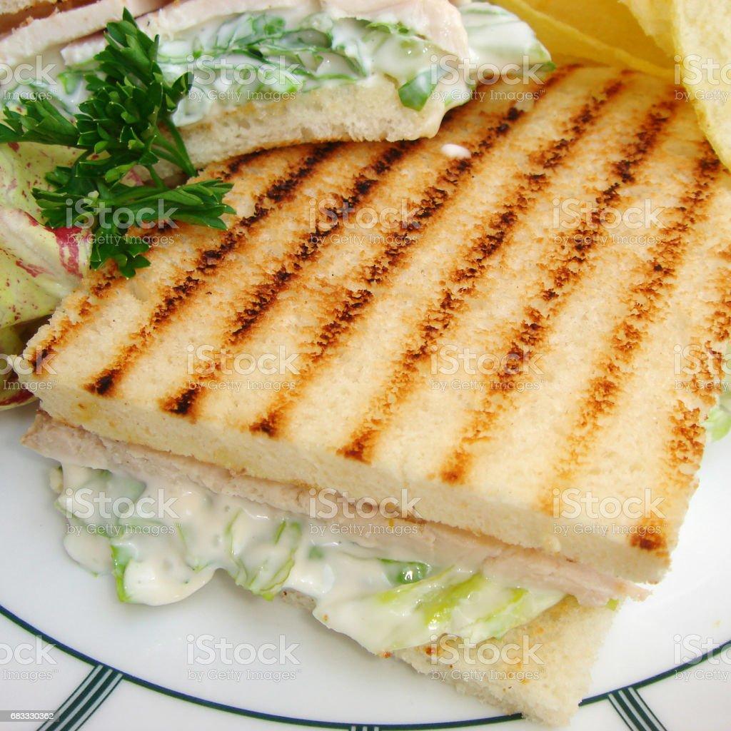 Turkey sandwich foto stock royalty-free