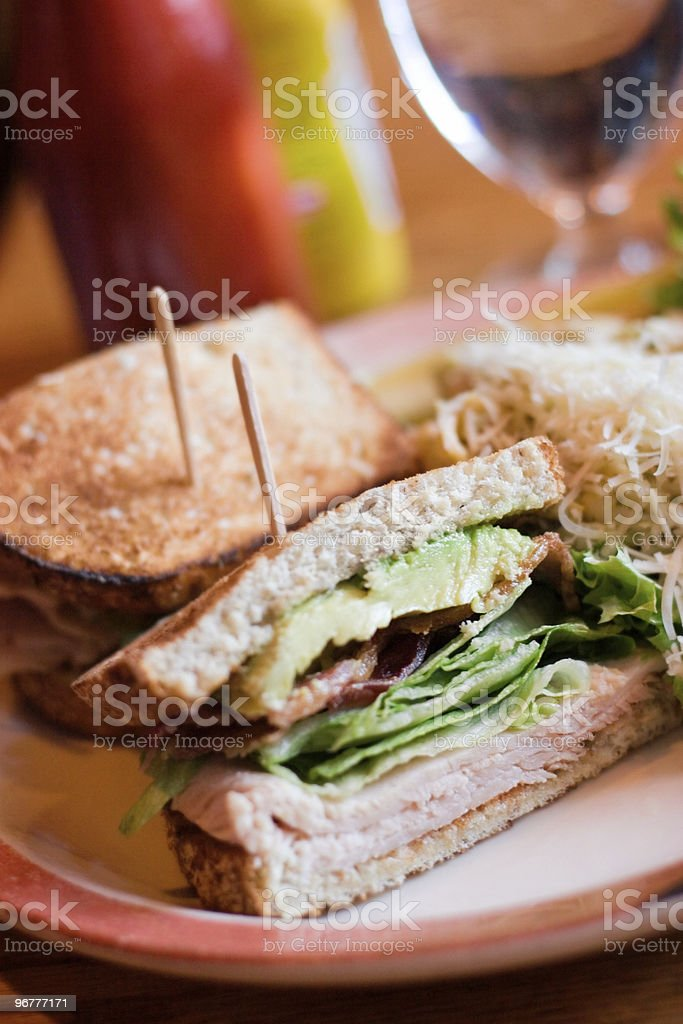Turkey Sandwich royalty-free stock photo