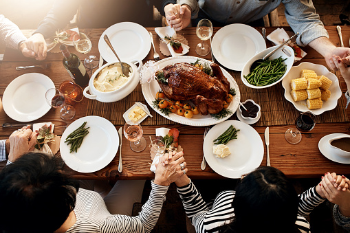 istock Turkey sure is the center piece of every meal 1095427770
